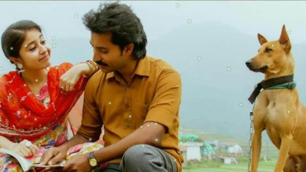 கோடி அருவி கொட்டுதே | Tamil Love WhatsApp Status | Tamil Status Video Song | Music Status