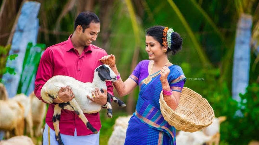 Rangola Gola Gola Penne  Neethano | whatsapp status tamil | Music Status